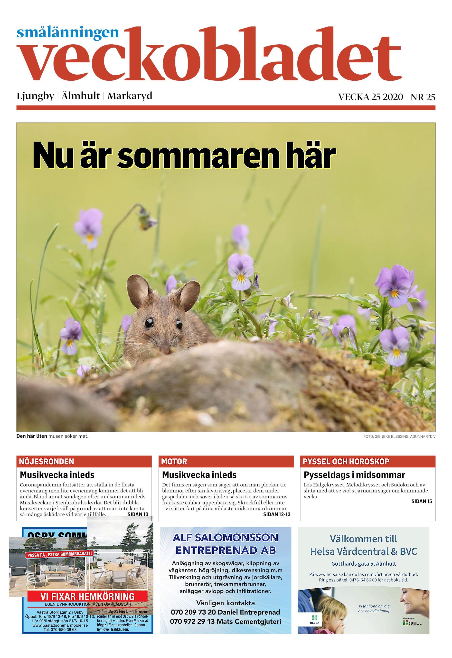 Agneta Ohmes, Stenbrohult 43, Di | satisfaction-survey.net